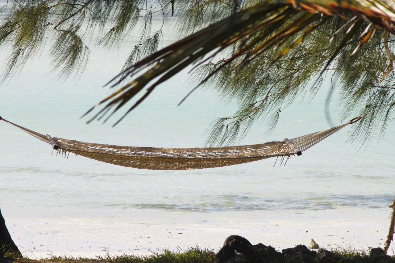 Séjour à Zanzibar : quelles expériences faire?